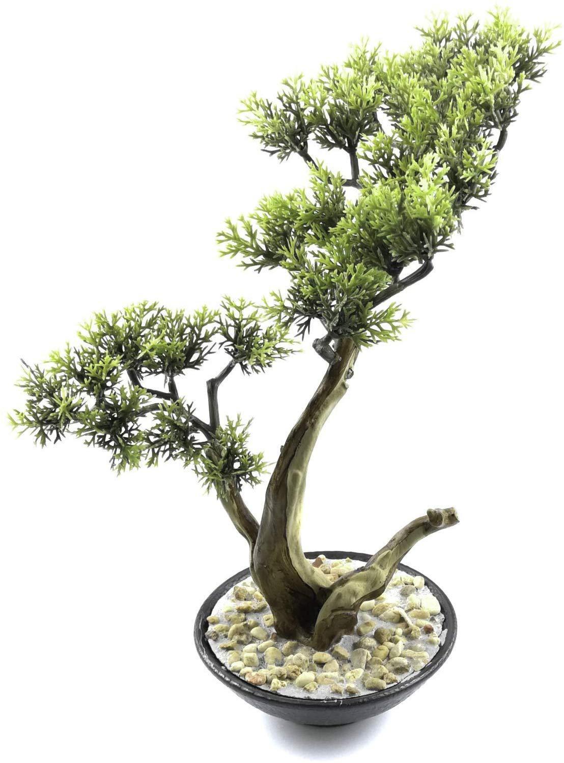 mini zen garden bonsai tree fake