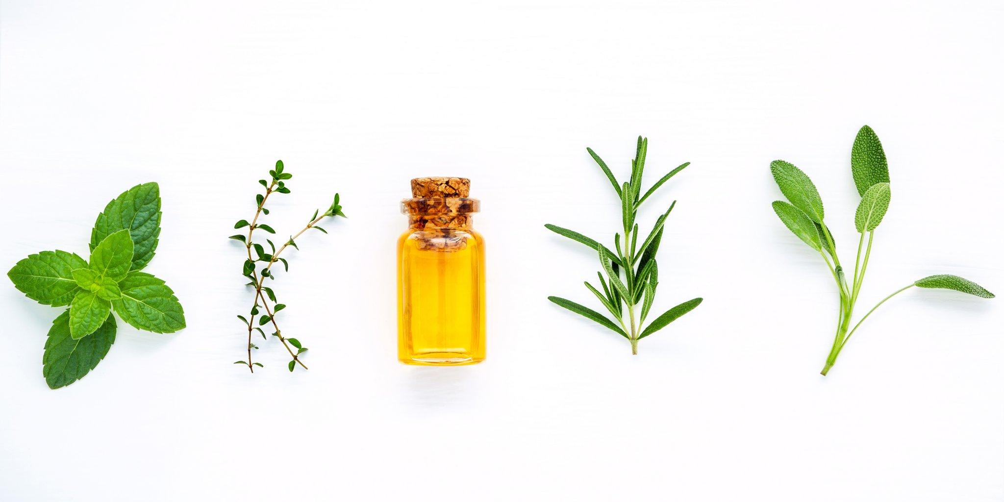 oil hair natural oils